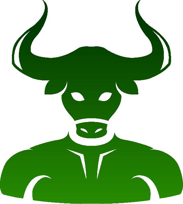 Taurus, A Beautiful Beast - ROMEO